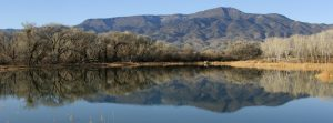 a small lake, trees in winter and mingus mountain reflected at dead horse state park, cottonwood arizona